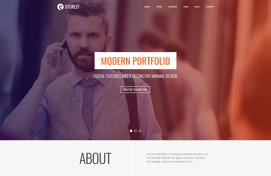 Sturlly | Responsive One Page Multi-Purpose Theme
